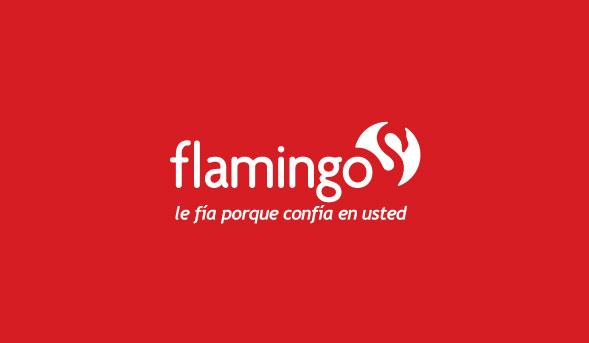 Flamingo Oficinas